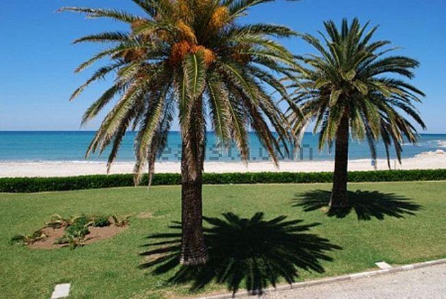 Bungalow in Els Poblets Las Marinas