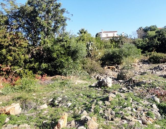 PL03 Plot of land for sale in Denia with views to the Montgó. - Property Photo 4