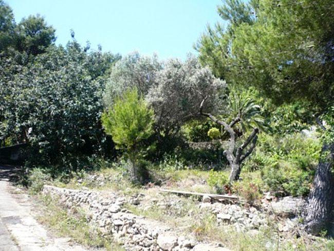 Plots of land in Denia Las Rotas