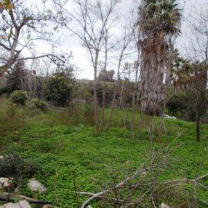 V04 Casa de Campo en venta de 3 dormitorios en La Jara, Denia.