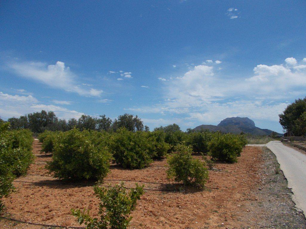PL07 Building plot of land for sale in Ondara, Alicante