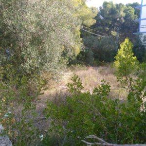X-PAR-D-0001 Plot Land in Dénia with  Bedrooms