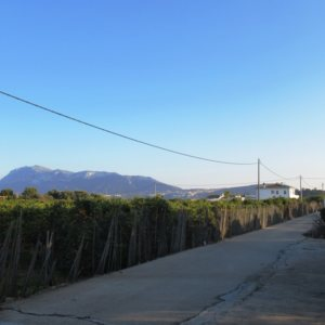 VP71 Villa for sale in Denia with large plot of land
