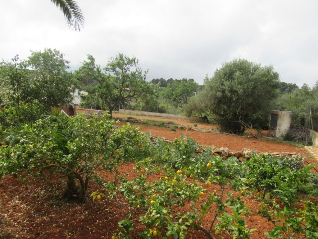 VP53 Rustic Villa for sale with views of the mountain in Javea, alicante, Spain - Property Photo 3