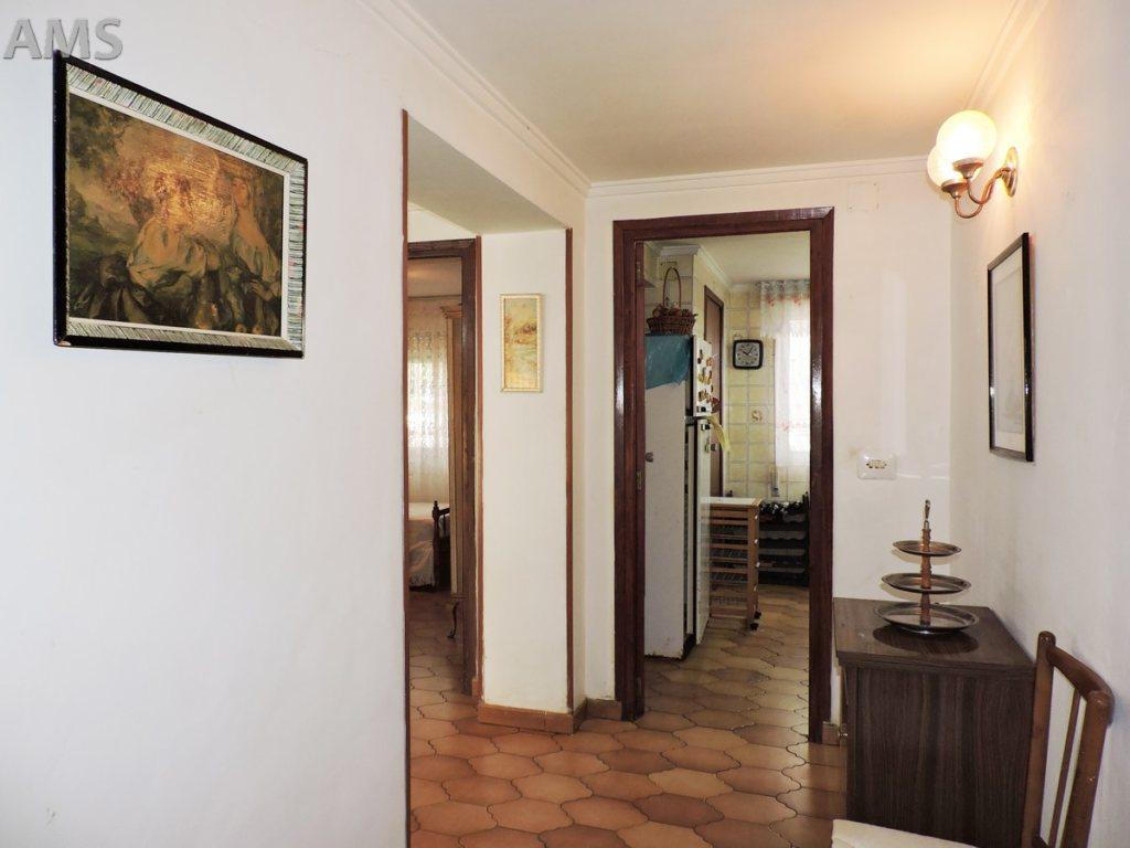 X-CC2019 Parcela en Pedreguer con 6 Dormitorios - Foto Propiedad 19