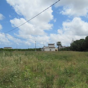 V28 Country house for sale in La Xara with large plot of land